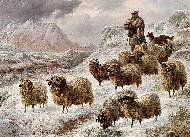 Herding Sheep on a Snow Covered Hillside