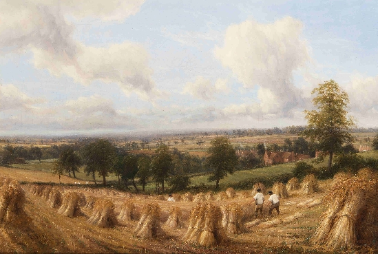 Thomas Baker - The Harvesters